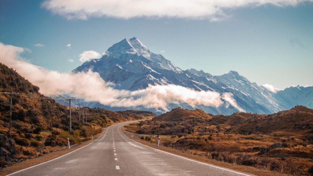 New Zealand Landscape photo - Organic Manuka Honey